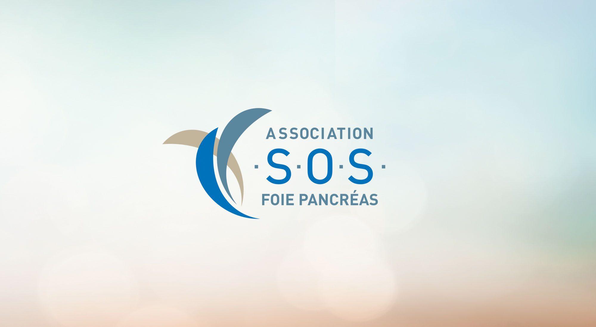 Chirurgie Foie Pancréas - Hôpital Strasbourg Hautepierre CHU - L'Association